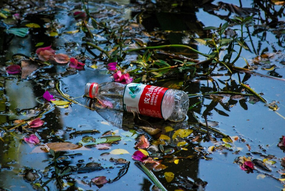 Plastic is not fantastic! How to give plastic a vacation for a green August!