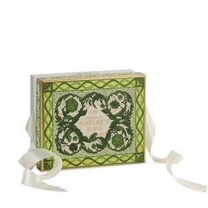 Spring Gifts Logo Box Spring - S